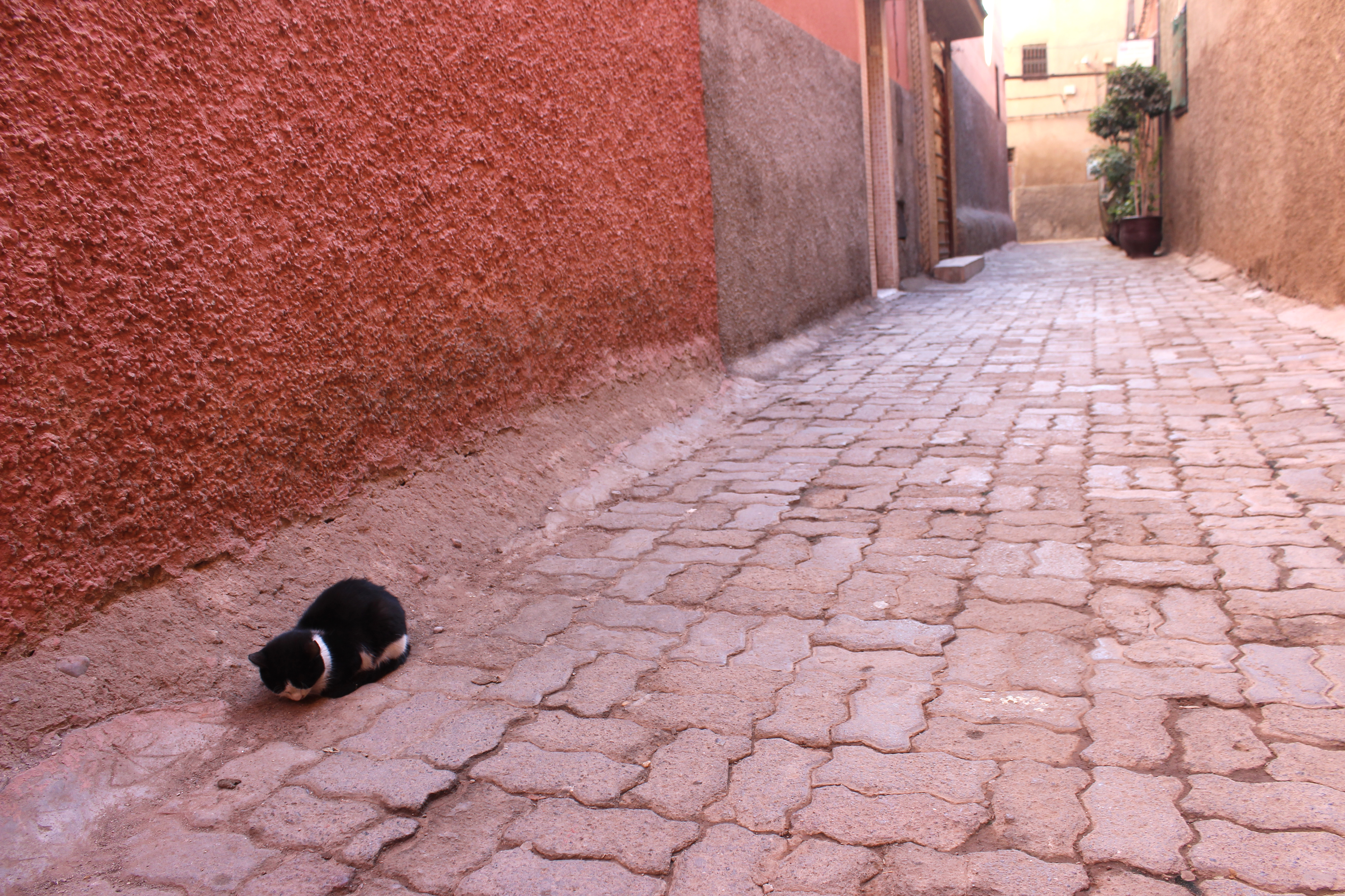 marokko2