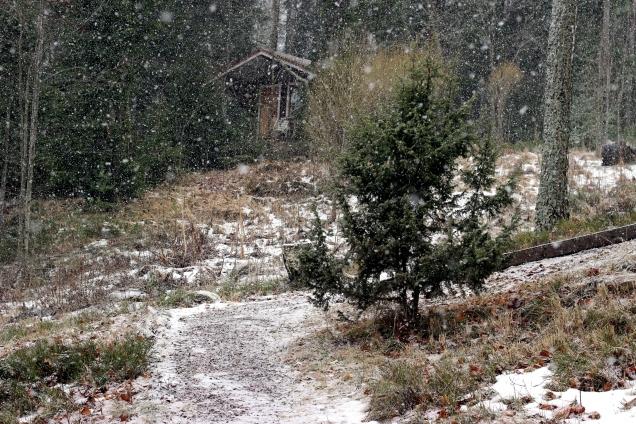 snö2januari
